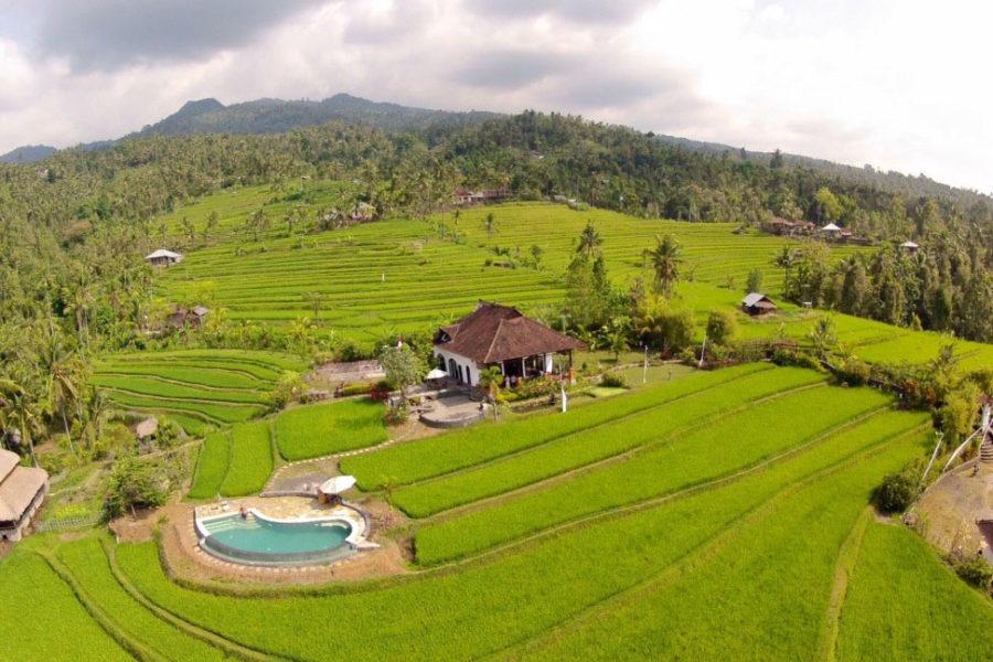 Why Bali